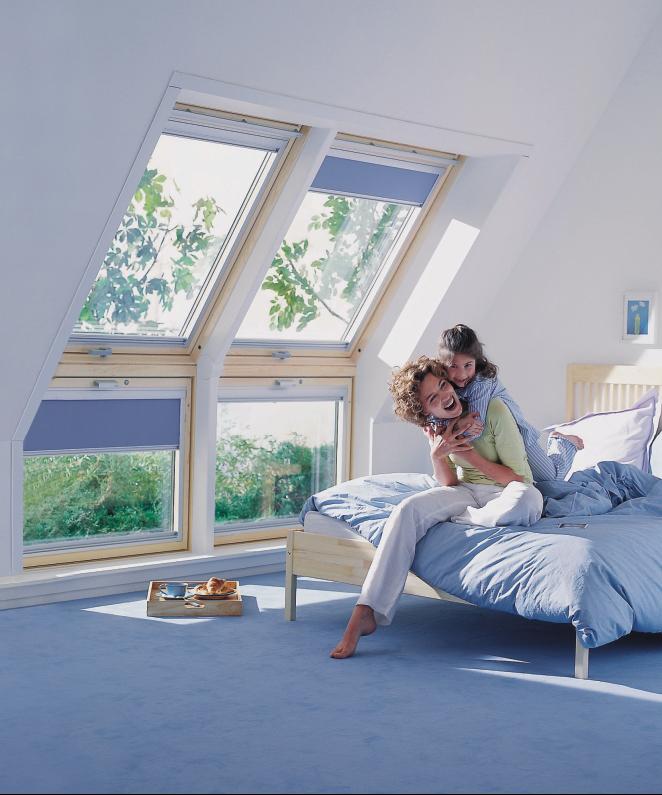 Вертикални прозорзи VFE